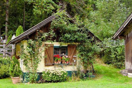 prix-jardinage-à-domicile